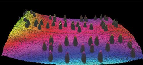3D-Visualisierung einer Blindenschriftprägung (Brailleschrift) auf einer Medikamentenverpackung